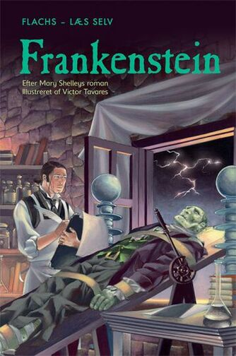 Mary Shelley: Frankenstein (Ved Rosie Dickins)